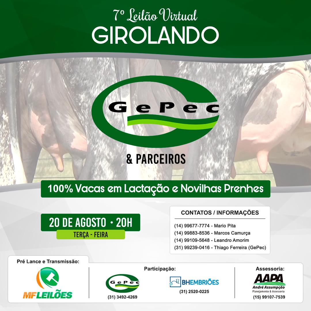 7º Leilão Virtual Girolando Gepec & Parceiros