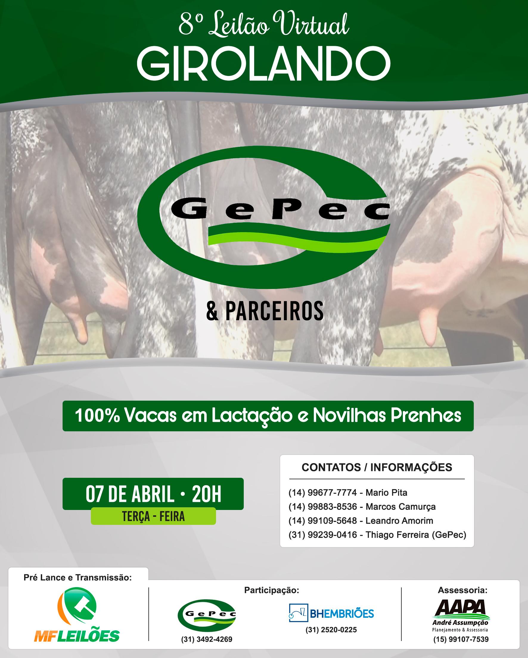 SAVE THE DATE:  Leilão Virtual Girolando Gepec e Parceiros em 2020